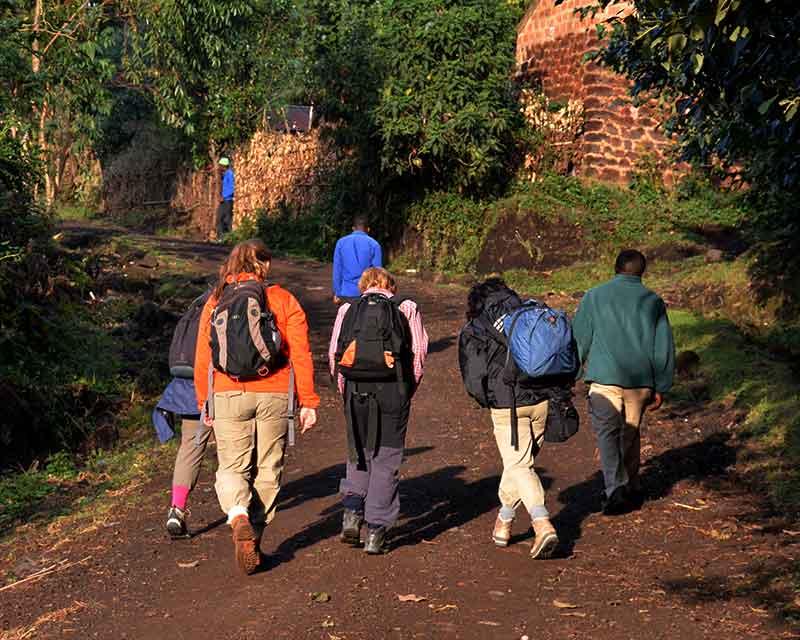 Hiking in the Mgahinga with+Uganda+Kwezi+Outdoors